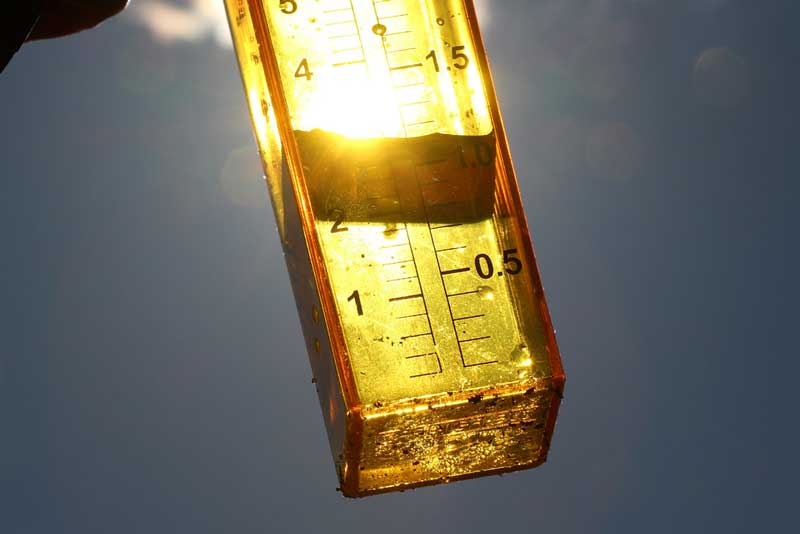 How-Does-A-Rain-Gauge-Measure-And-How-It-Works